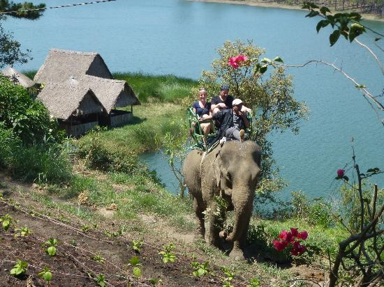 Elephant ride at Tuyen Lam Lake, Dalat