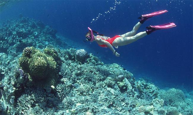 Diving in Nha Trang, Vietnam