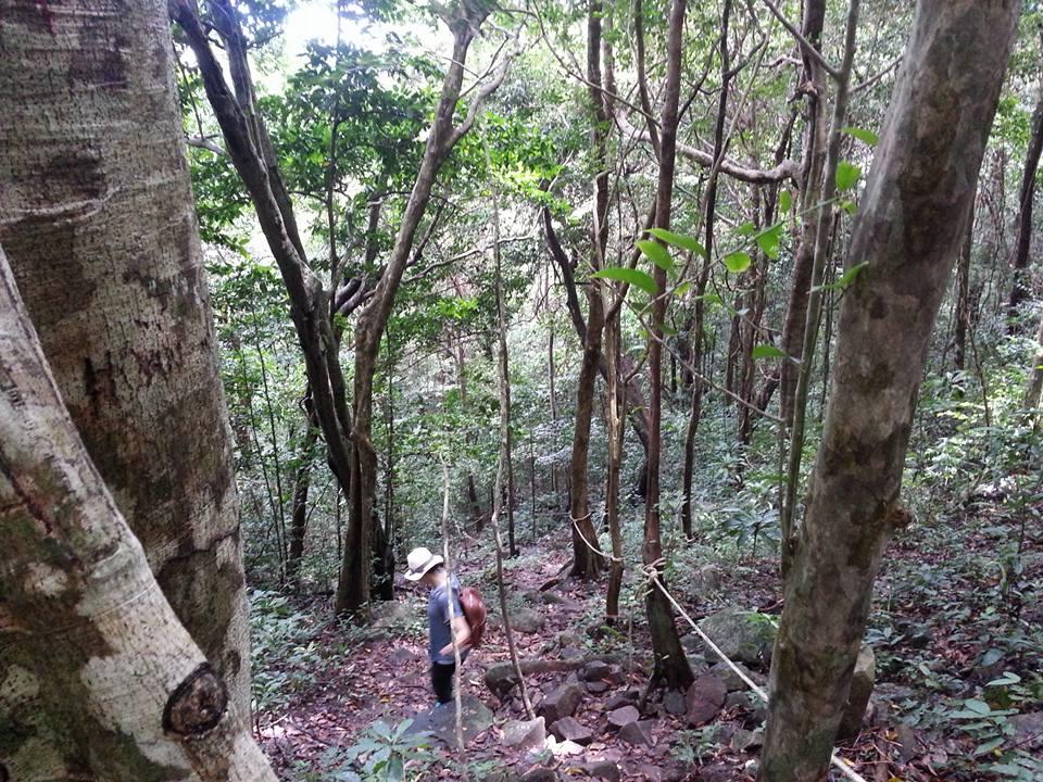Trip to discover Con Dao National Park, Vietnam