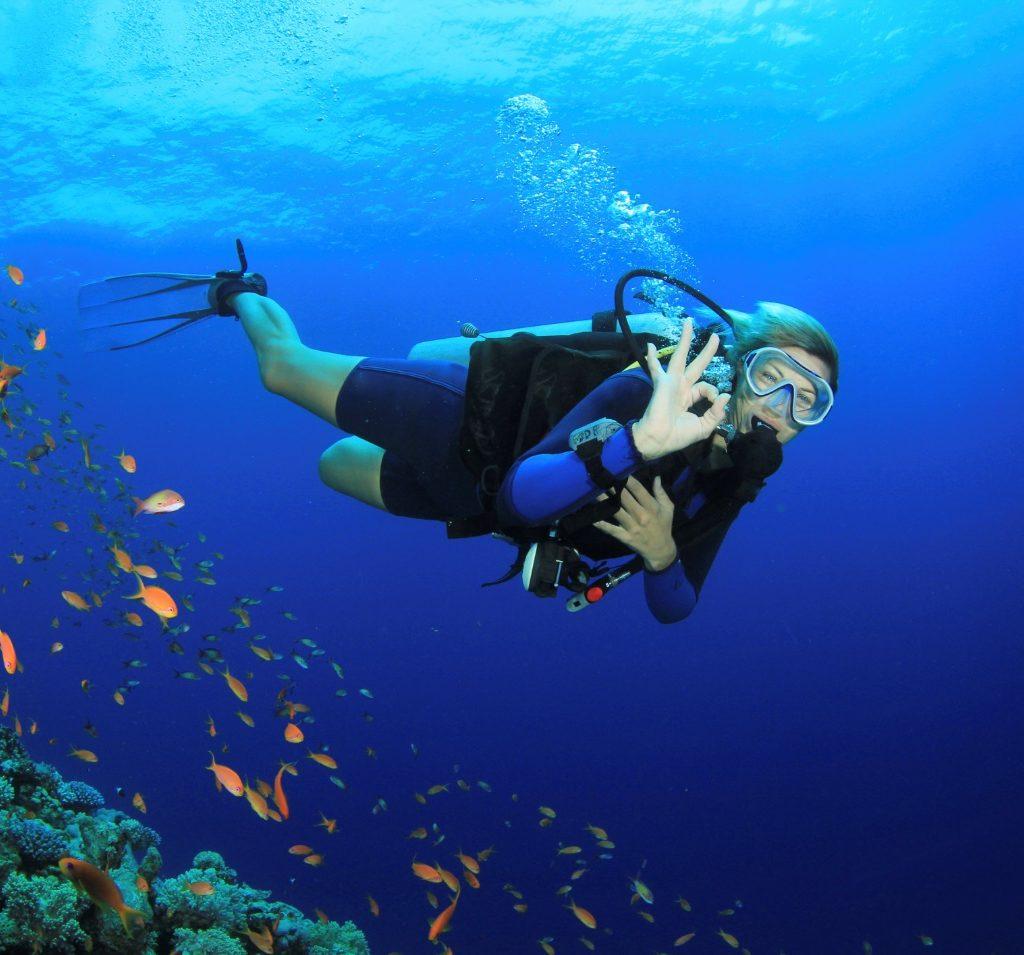 Diving at Cu Lao Cham Islands Vietnam